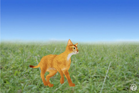 Screenshot AbyssinianCat Petting cat 3D REAL